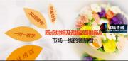 广州味尚教育培训有限公司