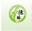 深圳龙岗区德林教育