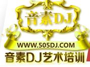 音素DJ艺术培训